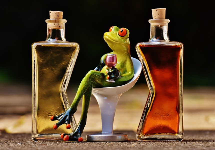frogs-1650658_1920